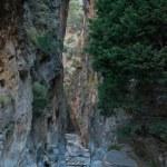 Samaria Gorge — Stock Photo #14215433