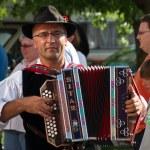 Musician at Villacher Kirchtag — Stock Photo #14644975