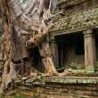 Preah Khan Temple — Foto Stock