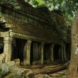 Royalty-Free Stock Photo: Mystical Ta Prohm