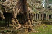 Preah khan templet — Stockfoto
