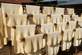 Rubber drying — Stock Photo