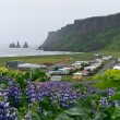 The icelandic town Vik — Stockfoto