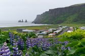 The icelandic town Vik — 图库照片