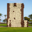 Torre del Conde — Stock Photo #32313089