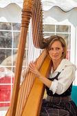 Lady playing a harp — Stock Photo