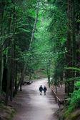 Couple having a walk — Stock Photo