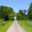 Dirt Road — Stock Photo #12098232