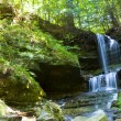 Waterfall in green forest, Michigan USA — Stock Photo #12099458