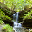 Stock Photo: Waterfall in green forest, Michigan USA