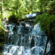 Waterfall in green forest, Michigan USA — Stock Photo #12099482