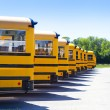 Yellow School Bus — Stock Photo