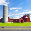 American Countryside Red Farm With Blue Sky — Stock Photo #16564027