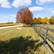 Stock Photo: Wooden Fence on American Countryside