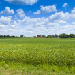 Countryside Landscape — Foto de Stock