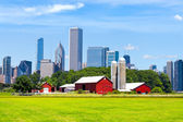 American Red Farm With Chicago Skyline in Background — Stock Photo