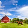 Agriculture Landscape With Old Red Barn — Stock Photo #16876799