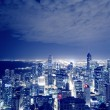 Night View On Chicago Skyline — Stock Photo #16876991