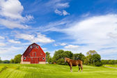 Agriculture Landscape With Old Red Barn — Stock Photo