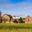 Countryside Farm in the morning — Stock Photo #17200409