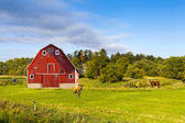 American Countryside With Blue Cloudy Sky — Stock Photo