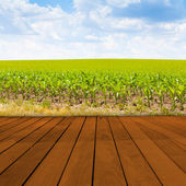 Old Table Surface With Blurred Countryside Landscape — Stock Photo
