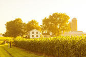 American Countryside Landscape With White Barn — Stock Photo