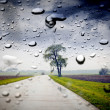 Country Road in the rain — Stock Photo #22756874
