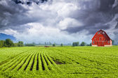 American Countryside — Stock Photo