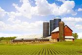 Fazenda de gado leiteiro vermelha com céu ensolarado — Foto Stock