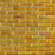 Urban Background (Red Brick Wall Texture) — Stock Photo #23929777