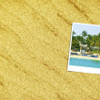 Vacations Background — Stock Photo #25025929
