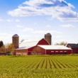 Traditional American Farm — Stock Photo #25988837