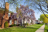 Spring in suburbs — Stock Photo