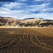 Stock Photo: American Countryside Field In Colorado