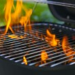 House Grill With Big Flame — Stock fotografie
