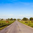 American Countryside Road With Blue Sky — Stock Photo