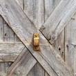 Wooden Door — Stock Photo #27210041