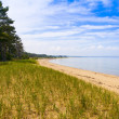 Upper PeninsulBeach - Michigan, USA — Stock Photo #28349415
