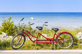 Red Tandem — Stock Photo