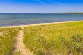 Beach Walkway — Stock Photo