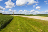 American Country Road Side View — Stok fotoğraf