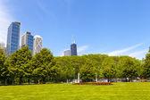 городской парк с скайлайн чикаго в фоновом режиме — Стоковое фото
