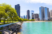 City Park With Chicago Beach in Background — Stock Photo
