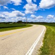 American Country Road Side View — Stock Photo #31847469