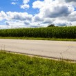 American Country Road Side View — Stock Photo #31848127