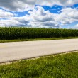 American Country Road Side View — Stock Photo #31848155
