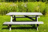 Picnic Table — Stock Photo
