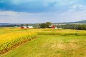 Zona rural americana — Foto Stock