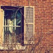 Traditional window — Stock Photo #41561837